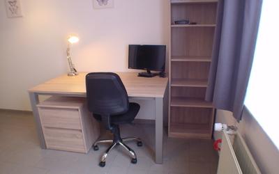 Domus Paludium studio standard 20m² desk