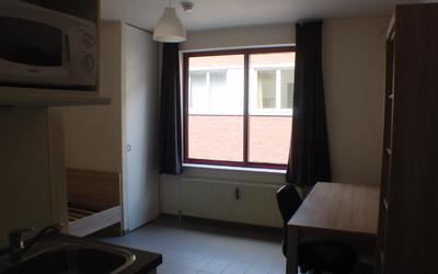 Domus Paludium standard studio 20m² interior