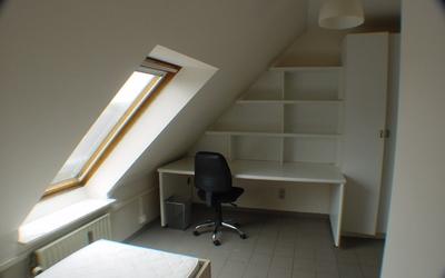 Domus Paludium DUPLEX 40m² room1 (DP0302 till DP0308)